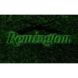 REMIGTON